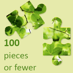 100 pieces or fewer